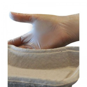 Polyco Bodyguards GL622 Vinyl Powder-Free Disposable Gloves
