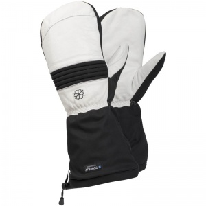Ejendals Tegera 191 Thermal Waterproof Leather Mittens